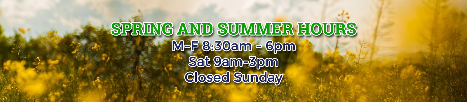Spring and Summer Hours