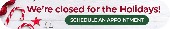 Schedule A Holiday Appointment button